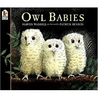 Owl Moon - Owl Babies