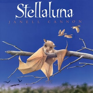 Featured Book Stellaluna The Learning Basket