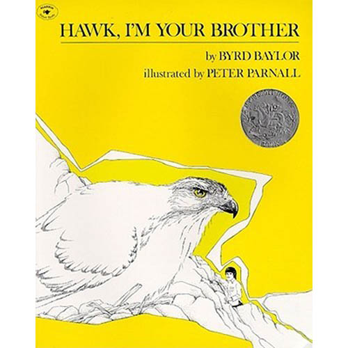 hawk-im-your-brother