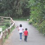 Starting Your Preschool Homeschool (August 18)